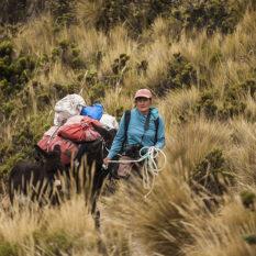 """Unterwegs """"mit Sack & Pack"""" im hohem GrasFoto:©Lichtbildarena"""