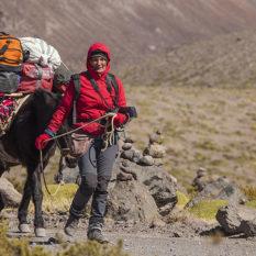 """Unterwegs in der Pampa mit """"Negro"""", einem unserer MauleselFoto:©Lichtbildarena"""