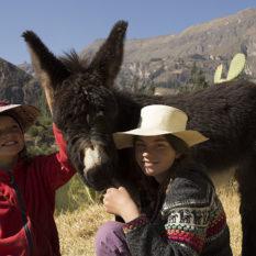 Saba und Lola mit Joseppel, unserem EselchenFoto:©Lichtbildarena